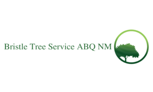 Bristle Tree Service Albuquerque NM Logo